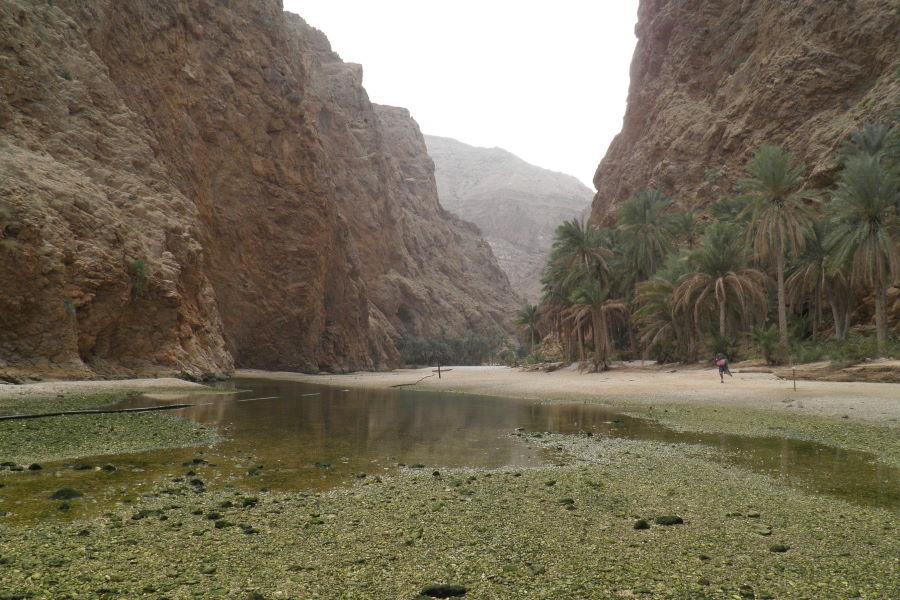 Wadi à Oman