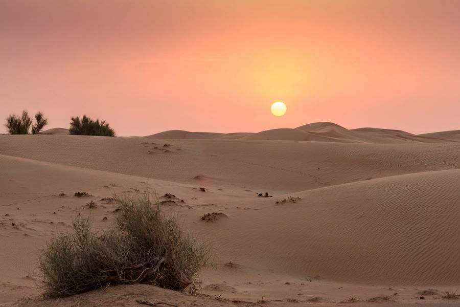 Géographie de Dubaï